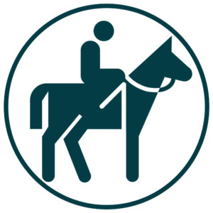 icoon paardrijden epe